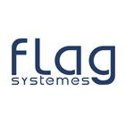 Logo de flag systeme